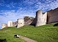 Château de Coucy, Chèvre.jpg