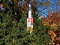Chadwick Arboretum (31123919316).jpg