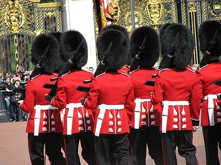 رتل من الرجال يرتدون قبعات سوداء ضخمة مصنوعة من جلد الدب، وستر حمراء.