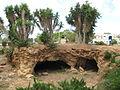 Charles Netter's Cave in Mikveh Israel.JPG
