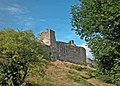Chepstow castle - geograph.org.uk - 1480776.jpg