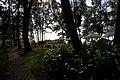 Choeng Thale, Thalang District, Phuket 83110, Thailand - panoramio (49).jpg