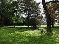Ciężkowice park dworski, 2 poł. XIX nr 613934 (7).JPG
