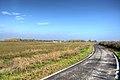 Ciclabile - Nonantola (MO) Italia - 14 Novembre 2012 - panoramio.jpg