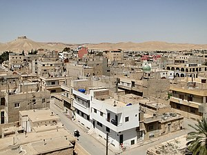 Palmyra (modern) - The modern town of Palmyra