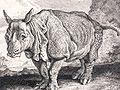 Clara 1748.jpg