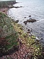 Cliff, Rocks and Sea - geograph.org.uk - 503093.jpg