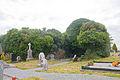 Clonkeenkerrill Friary South Transept 2 2009 09 16.jpg