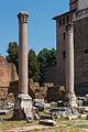 Columns Basilica Aemilia Forum Romanum Rome.jpg
