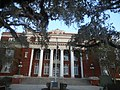 Columns and Obstructing Trees of Hernando County Courthouse.jpg