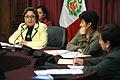 Comisión de la Mujer en sesión informativa.jpg