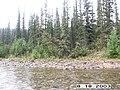 Copper Creek, Yukon-Charley Rivers, 2003 (bf7a3d09-8c67-4ece-a92b-eb12c716c202).jpg