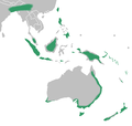 Corybas distribution map.png