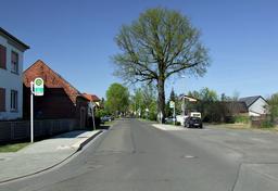 Alte Lindenstraße in Cottbus