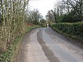 Country road leaves Little Birch - geograph.org.uk - 664708.jpg