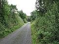 Country road near Thorn Lough - geograph.org.uk - 1505612.jpg