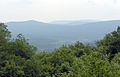 Cranberry Wilderness, WV, view.jpg