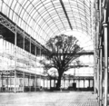 Crystal Palace Great Exhibition tree 1851.png
