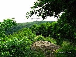 Csóványos - Szabó-kövek - panoramio.jpg
