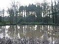 Cunnery Pond - geograph.org.uk - 291148.jpg