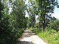 Dūkšto sen., Lithuania - panoramio (24).jpg