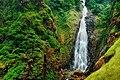 Dabbe Falls SAGARA.jpg
