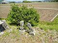 Dai 33 Chiwari Ōbuke, Hachimantai-shi, Iwate-ken 028-7111, Japan - panoramio (12).jpg