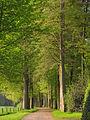 Dalfsen, Den Aalshorst tuin- en parkaanleg RM528702 (3).jpg
