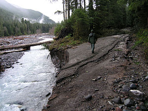 Carbon River - In some places, the 2006 flood of the Carbon River tore away large pieces of the Carbon River Road.