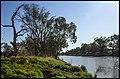 Darling River Bourke-2 (21364864515).jpg