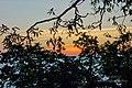 Dastoori Naka,Matheran - panoramio (10).jpg