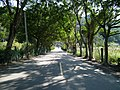Daxi Fushan Road 大溪福山路 - panoramio.jpg