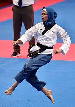 Taekwondo Encyclopedia Pdf