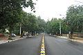 Delhi-Street view.JPG