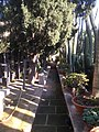 Derek Garden Centre 09.jpg