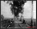 Desa Grendeng, di sebelah kiri Ladang Tebu PG Poerwokerto, 1890-1915.jpg