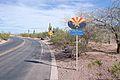 Desert Botanical Garden-1.jpg