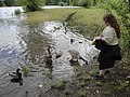 Detroit Ranger District-Free Fishing Day-114 (34850360726).jpg