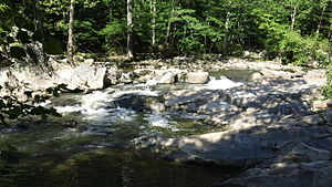 Difficult Run - The Difficult run tributary as seen from the Georgetown Pike entrance, before it flows into the Potomac River