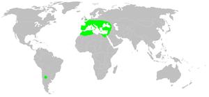 Segestria florentina - Image: Distribution.segestr ia.florentina.1