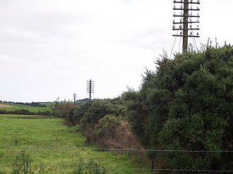 Ballinhassig railway station - Near Ballinhassig with the telegraph poles running along the closed line in 2005.