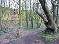 Disused quarry, Elland Wood Bottom, Halifax - geograph.org.uk - 1202451.jpg