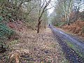 Disused railway cutting, Blackbrook Wood, Shepshed, Leicestershire - geograph.org.uk - 126643.jpg