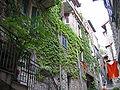 Dolceacqua19 - Vicoli del paese.jpg