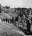 Domobranski udarni bataljon na pohodu.jpg