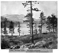 Donner Lake and Central Pacific R.R. LCCN2002719080.jpg