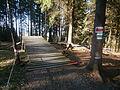 Downhill - Cheb - Zelená hora.JPG