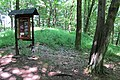 Drbákov-Albertovy skály (17).jpg
