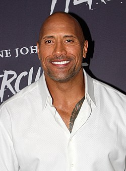 Dwayne Johnson 2014.