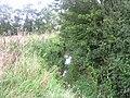 Dyke Brook - geograph.org.uk - 543014.jpg